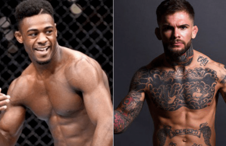 Aljamain Sterling And Cody Garbrandt Trade Blows