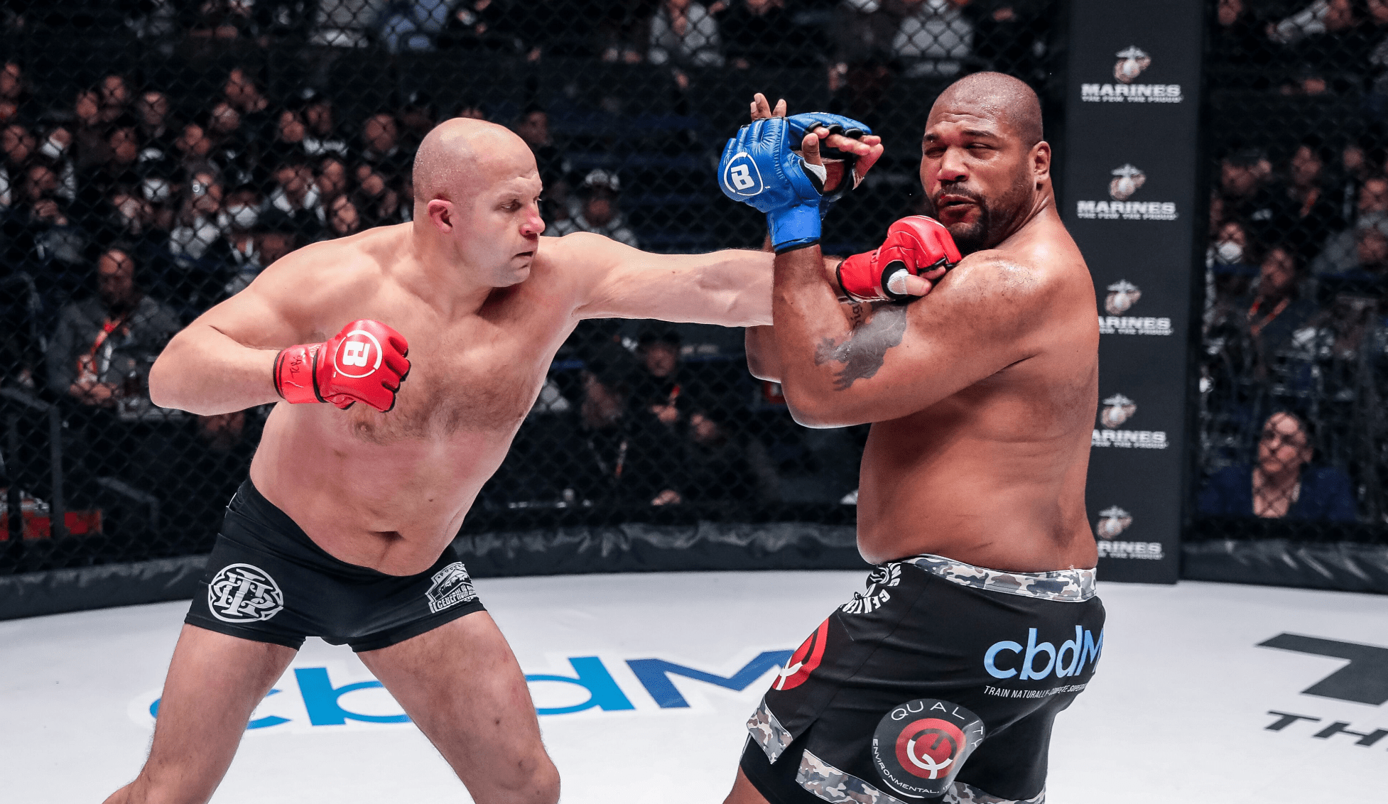 Bellator Japan: Fedor vs 'Rampage' Results