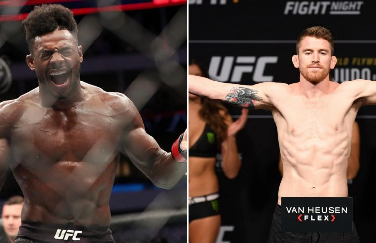 UFC Fight News: Including Sterling, O'Malley, Magny, PVZ And Ladd