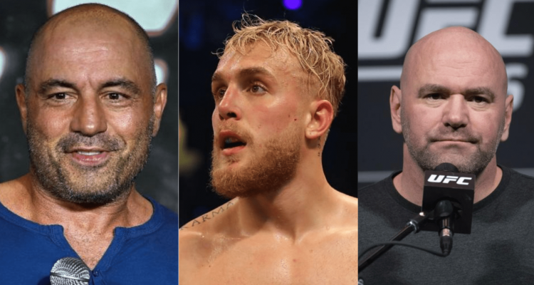 UFC, Joe Rogan, Jake Paul, Dana White